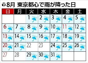 8月の雨.jpg