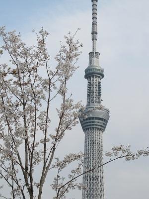 浅草③ 3.jpg